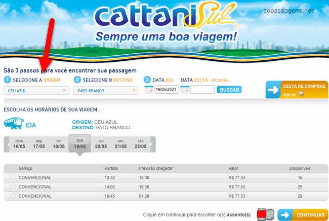 Como comprar passagem da Cattani Sul pela internet?
